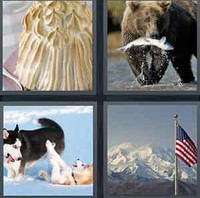 4 Pics 1 Word Levels Alaska