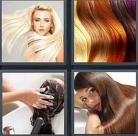 4 Pics 1 Word Levels Hair